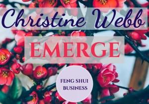 Christine Webb - FENG SHUI BIZ