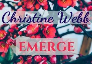 Christine Webb - LOGO