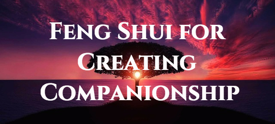 Chris Webb - fengshui for companions